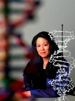 Vivian Ota Wang